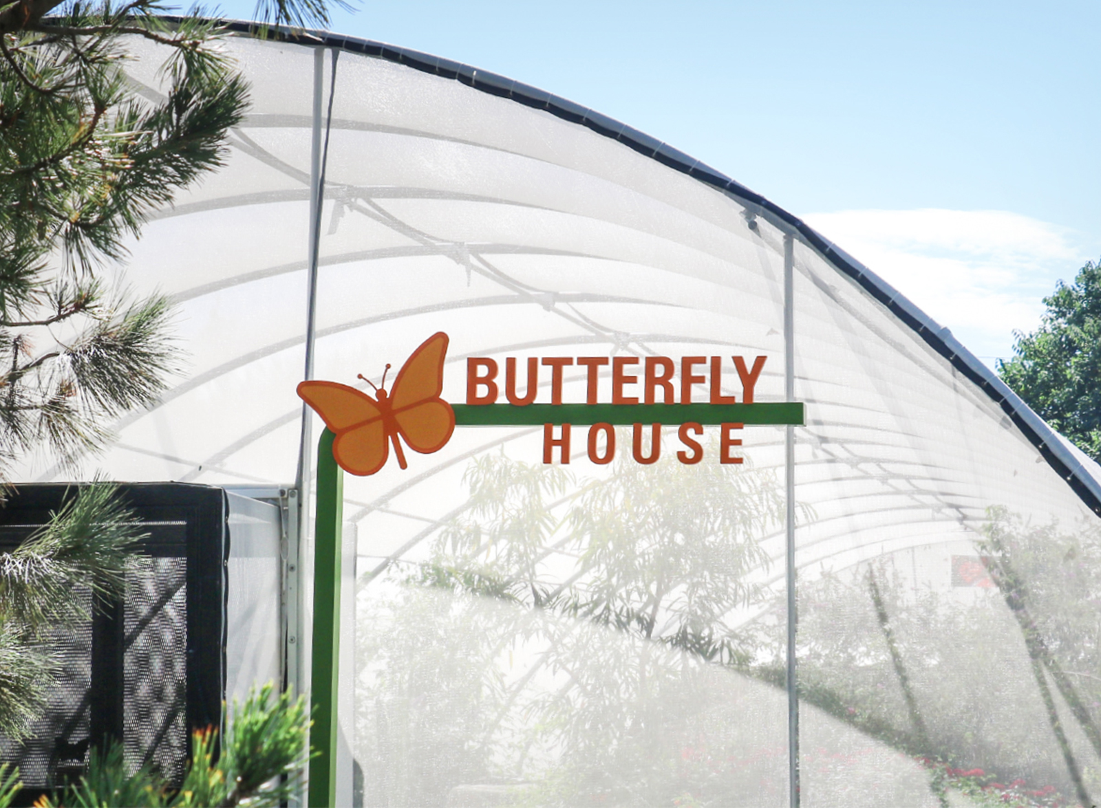 butterflygarden4